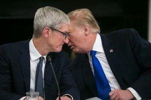 Khen Apple đầu tư nhiều tiền ở Mỹ, ông Trump mời CEO Tim Cook ăn tối