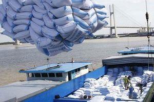 42 doanh nghiệp được cấp phép kinh doanh xuất khẩu gạo theo Nghị định 107