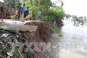 An Giang ban bố tình huống khẩn cấp sạt lở bờ sông Hậu lần 2