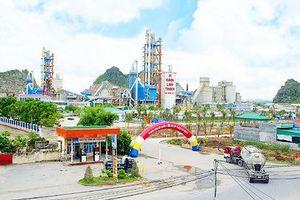 Chuyện gì đang xảy ra ở CTCP Xi măng và Xây dựng Quảng Ninh (QNC)?