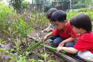 Dạy kỹ năng cho trẻ: Tự phát, không kiểm soát