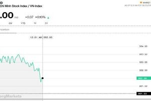 Chứng khoán sáng 20/8: Cổ phiếu vốn hóa thấp vẫn được ưu tiên