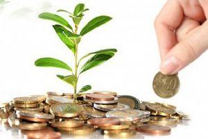 Cổ phiếu tăng hơn 3 lần từ đầu năm, Công trình Viettel (CTR) chuẩn bị trả cổ tức 27,1%