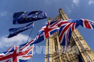 Nguyên nhân đằng sau sự chững lại của ngành công nghiệp châu Âu