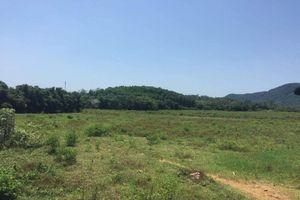 Người nhà nguyên lãnh đạo huyện Quốc Oai, Hà Nội được thuê đất giá 'bèo', lộ nhiều khuất tất?