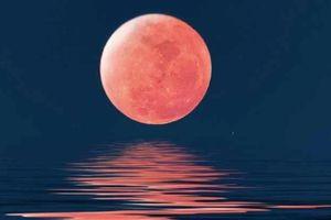 Nếu tinh mắt, bạn sẽ thấy Mặt trăng sáng hơn cả Mặt trời