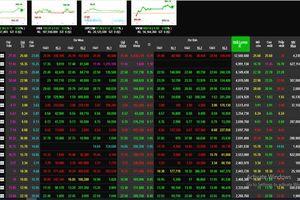 Phiên 21/8: Dòng tiền chảy mạnh, VN-Index vọt tăng gần 10 điểm
