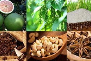 EVFTA đem lại lợi thế cho nông nghiệp Việt