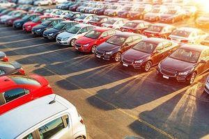 Thị trường nhập khẩu ô tô giảm mạnh nửa đầu tháng 8