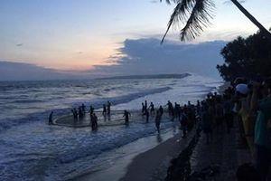 Bàng hoàng nhóm học sinh, sinh viên tắm biển,4 người chết và mất tích