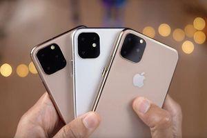 LG sẽ 'phụ trách' sản xuất ba module camera cho iPhone 11