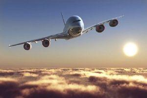Thiên Minh Group muốn lập hãng hàng không Cánh Diều, vốn điều lệ 1.000 tỷ đồng
