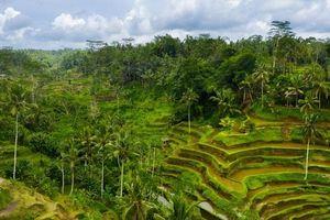 Những trải nghiệm khó quên tại đất nước vạn đảo Indonesia