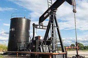Giá xăng, dầu (23/8): Quay đầu giảm nhẹ