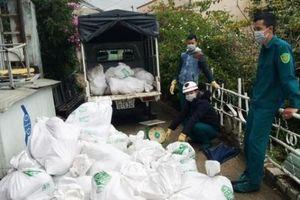 Lâm Đồng phạt chủ cơ sở trữ thịt lợn bẩn hơn 100 triệu đồng