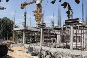 Phú Yên: Tạm dừng triển khai dự án để rà soát hay 'bức tử' doanh nghiệp?