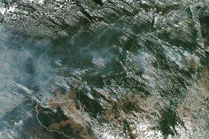 Rừng Amazon đang cháy dữ dội, Tổng thống Brazil vẫn yêu cầu thế giới không can thiệp