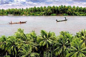 Du lịch xứ dừa