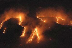 Brazil triển khai quân đội hỗ trợ chữa cháy rừng Amazon