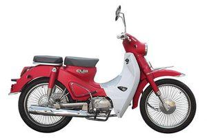 Xe máy 'nhái' Honda Super Cub, giá hơn 30 triệu