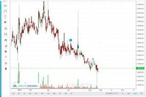 Cổ phiếu DVN khó phục hồi mạnh mẽ