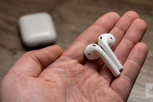 Apple Airpods và Sony WF-1000XM3: Chọn tiện lợi hay khử ồn?