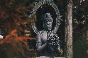 Phật dạy 4 kiểu người có bản lĩnh, bạn gặp được phải biết trân trọng và kết giao