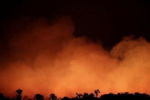 Đau xót cảnh rừng Amazon trước đây và đang bị lửa nuốt dần