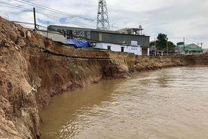 Góc nhìn phóng viên: 'Ma trận' đáy sông Hậu