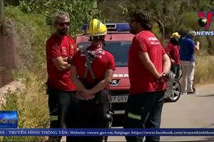 Tây Ban Nha: Va chạm máy bay, 7 người thiệt mạng