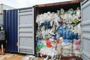 Đã chuyển 503 container phế liệu vi phạm khỏi Việt Nam