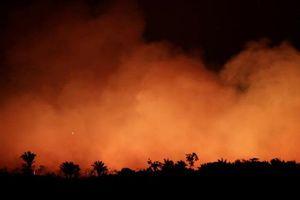Thế giới lo ngại sâu sắc trước cháy rừng 'đáng báo động' ở Amazon