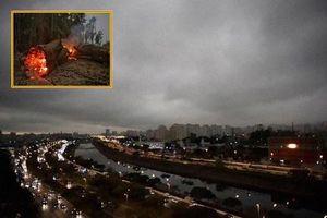 Cháy rừng Amazon: Bầu trời Brazil chìm trong khói tro, 3h chiều tối đen như giữa đêm