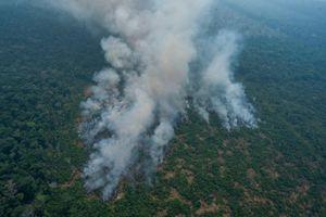 G-7 viện trợ 20 triệu Euro giúp dập tắt cháy rừng ở Amazon, Brazil bất ngờ từ chối