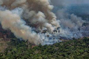 Loạt ảnh về thảm họa cháy rừng nhiệt đới Amazon