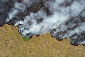 Cháy rừng Amazon: Cả thế giới 'nín thở' theo dõi