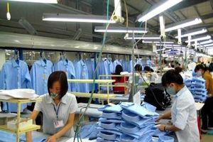 Doanh nghiệp Việt phải 'chuyển mình' để tận dụng EVFTA