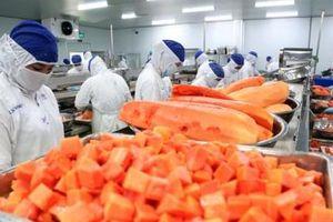 Trung Quốc ra quy định mới về quản lý ghi nhãn bao bì thực phẩm đóng gói sẵn xuất nhập khẩu