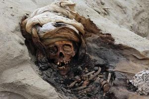 Phát hiện 227 bộ xương trong nghi lễ hiến tế trẻ em lớn nhất từng ghi nhận