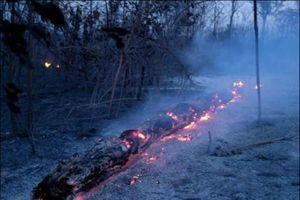 Mưa sẽ không dập tắt được cháy rừng Amazon trong vài tuần tới