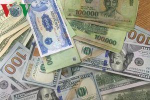 Giá USD hôm nay biến động nhẹ, phổ biến ở mức 23.140 - 23.260 VND/USD