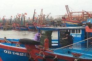 Quảng Bình: Hàng chục ngư dân trôi dạt trên vùng biển gần tâm bão số 4