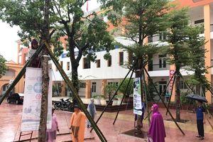 TP Vinh và nhiều huyện cho học sinh nghỉ học tránh bão số 4