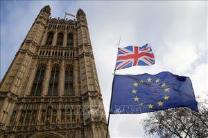 Các bộ trưởng EU hối thúc Anh lựa chọn một Brexit có trật tự