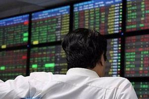 Chứng khoán ngày 29/8: Cổ phiếu Bóng đèn phích nước Rạng Đông RAL giảm sàn