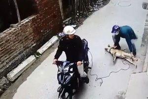 Truy đuổi đối tượng nghi trộm chó, nam thanh niên bị bắn tử vong