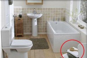 Đặt 4 thứ này ở phòng tắm chẳng khác nào nuôi cả ổ vi khuẩn trong nhà
