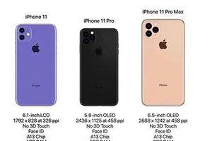Cấu hình chi tiết và giá bán của iPhone 11