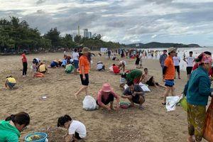 Kỳ lạ: Hải sản ồ ạt 'đổ bộ' vào bãi biển, dân hồ hởi đi 'hái lộc'