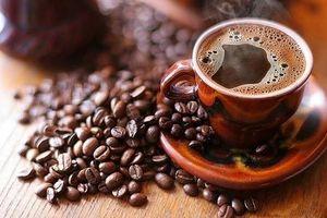 Giá cà phê hôm nay 31/8: Tăng phục hồi trở lại 200 đồng/kg